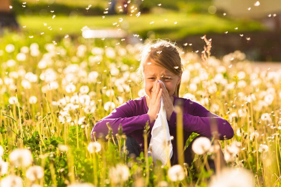 Rund ein Fünftel aller Bundesbürger hat derzeit Probleme mit Allergien oder Heuschnupfen.