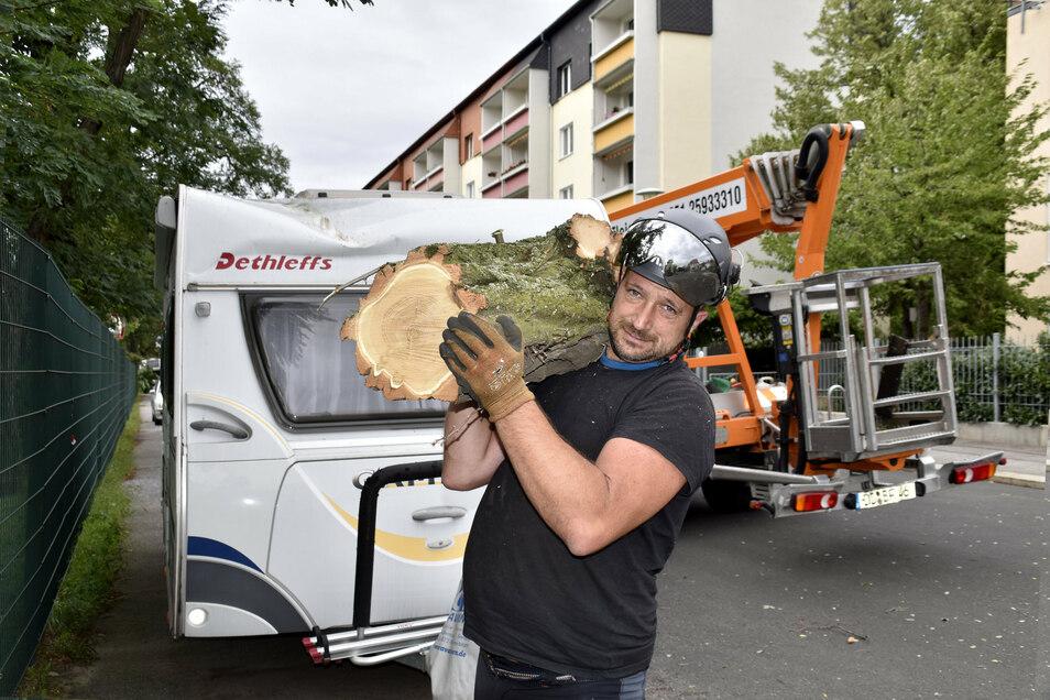 Jörg Kowar von der Baumpflege Fleischer schleppt ein Stück einer gekappten Robinien-Krone.