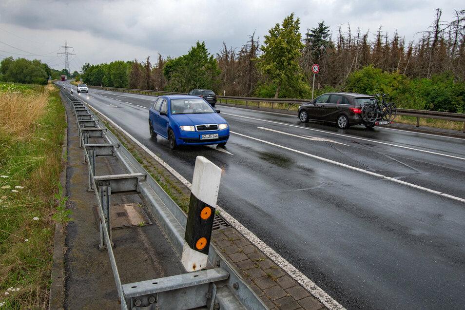 Für den Ausbau der B 169 zwischen der Autobahnabfahrt Döbeln Nord und Salbitz gibt es verschiedene Varianten.