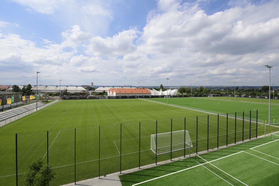Auftakt im neuen Trainingszentrum: Am 4. August startet Dynamo in die Saison, erstmals auf den Rasenplätzen in der Walter-Fritzsch-Akademie, wie das Trainingsgelände offiziell heißt.