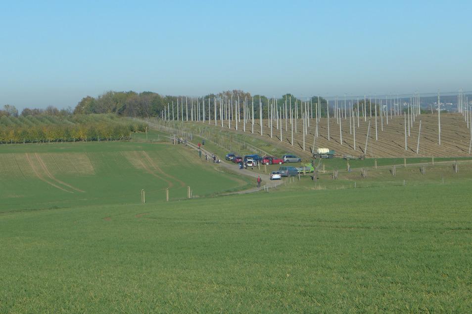 Der Verein Lebensraum Scharfenberg organisiert Baumpflanzaktionen rund um Naustadt.