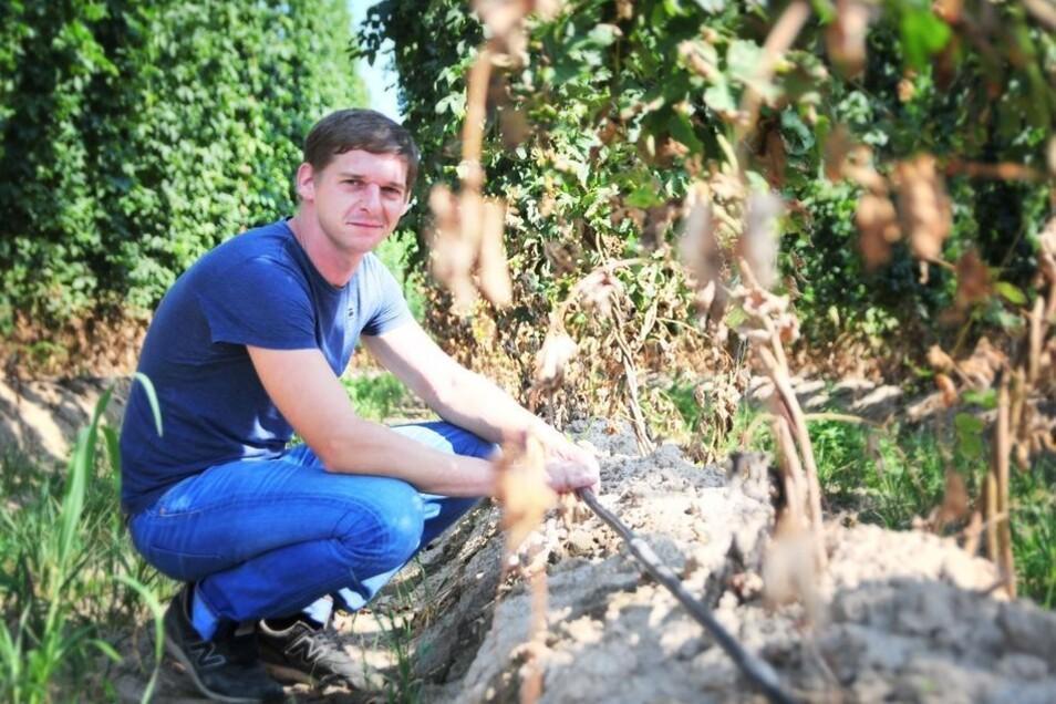 Mirko Demmel ist Obstbauer, aber schon viele Jahre im Hopfenanbau tätig.