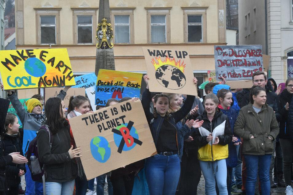 Klimademo in Sebnitz im März: Die Sebnitzer Schüler waren die ersten im ganzen Landkreis.