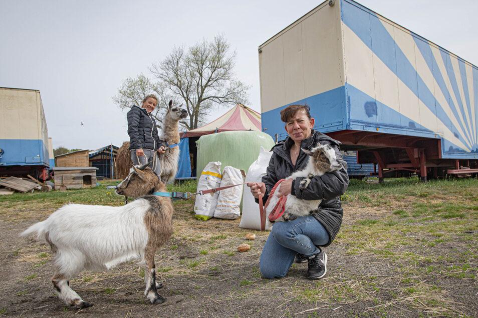 """Carola (vorn) und Kassandra Spindler vom """"Circus Mondial"""" können aufatmen. Das Futter für die Tiere ist erst einmal gesichert. Wegen Corona muss der Familienzirkus im Winterquartier bei Kamenz bleiben."""
