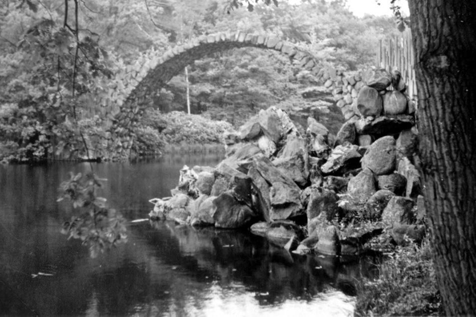 Ein altes Foto der Rakotzbrücke im Kromlauer Park – es wurde digitalisiert für das Landschaftsfotoportal des Senckenberg-Museums Görlitz. Um die 2.000 historische Bilder wurden schon erfasst. Sie stehen künftig im Internet.