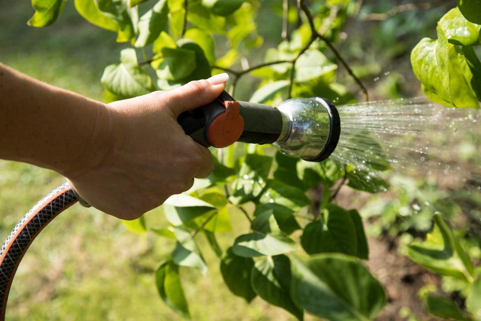 Wer gießen will, darf das Wasser auch weiterhin nicht aus oberirdischen Gewässern nehmen.