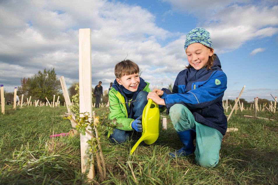 An einer der Baumpflanzaktionen im vergangenen Jahr auf dem Gelände der Stadtentwässerung Dresden beteiligten sich auch Oskar (l.) und Emil.