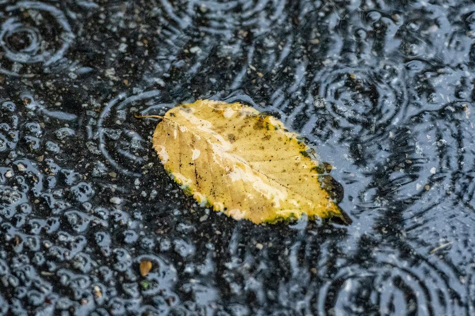 Am Freitag wird es vor allem von der Ostsee bis nach Sachsen sowie in Süddeutschland nass, wobei stundenlange Regenfälle zu beachtlichen Wassermengen führen könnten.