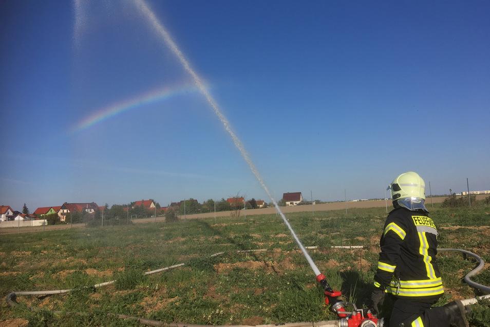 In einem abgestimmten Sondereinsatz bewässerten Walda-Kleinthiemiger Feuerwehrleute am Donnerstagabend die neue Schonung.