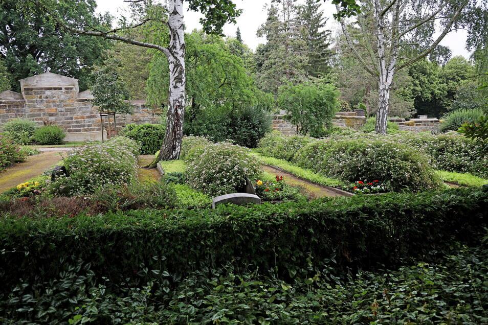 Der Trinitatisfriedhof in Altriesa. Die Friedhofskultur wurde 2020 Immaterielles Kulturerbe.