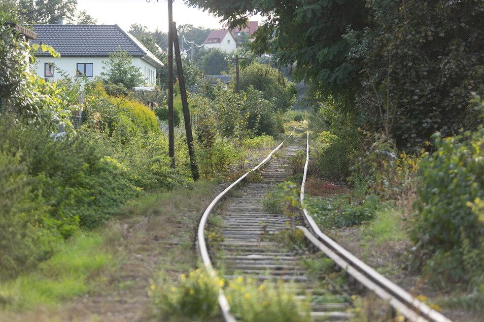Das Gleis mit der Wellenlinie: Die Schienen im Bereich Gitterseer Straße sind völlig verzogen. Sie müssen ersetzt werden.