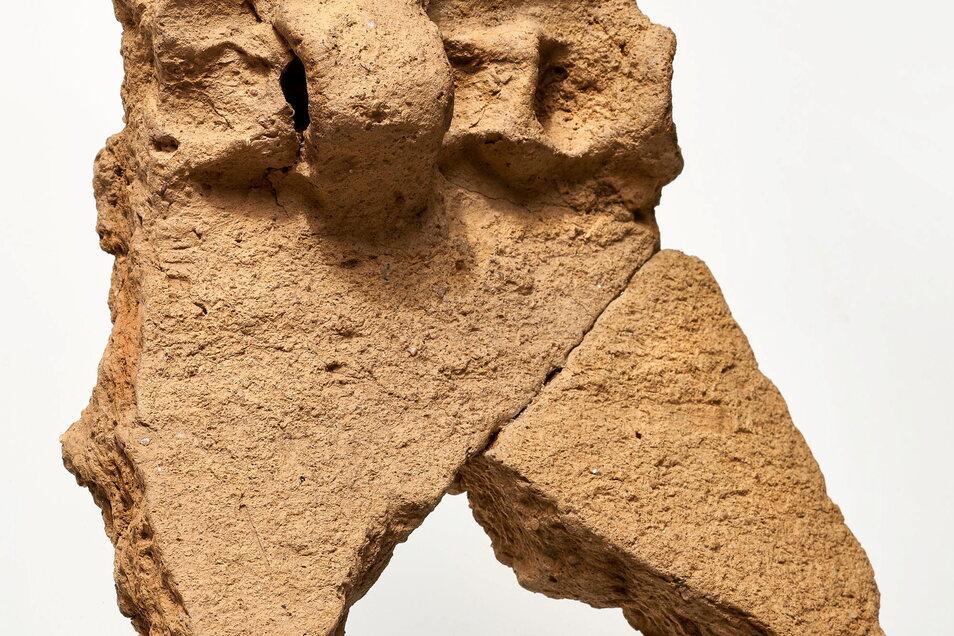 Diese markante spätbronzezeitliche Scherbe wurde 2016 bei Bauarbeiten auf der Festung Königstein entdeckt .