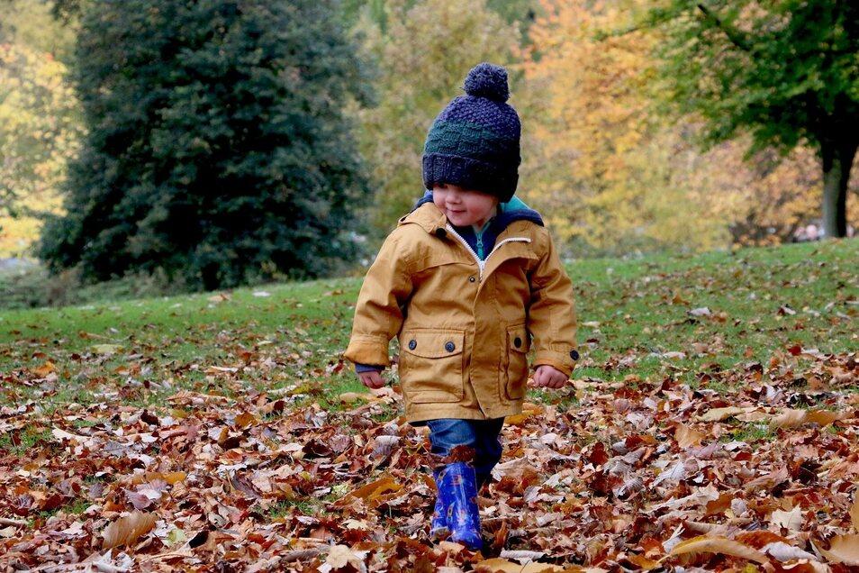Spaziergänge an frischer Luft sind im Herbst die beste Vorbeugung gegen Erkältungen.