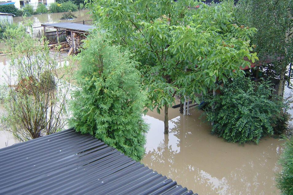 Blick über den Garten zu den Nachbarn, auch am 8.8.2010 aufgenommen.