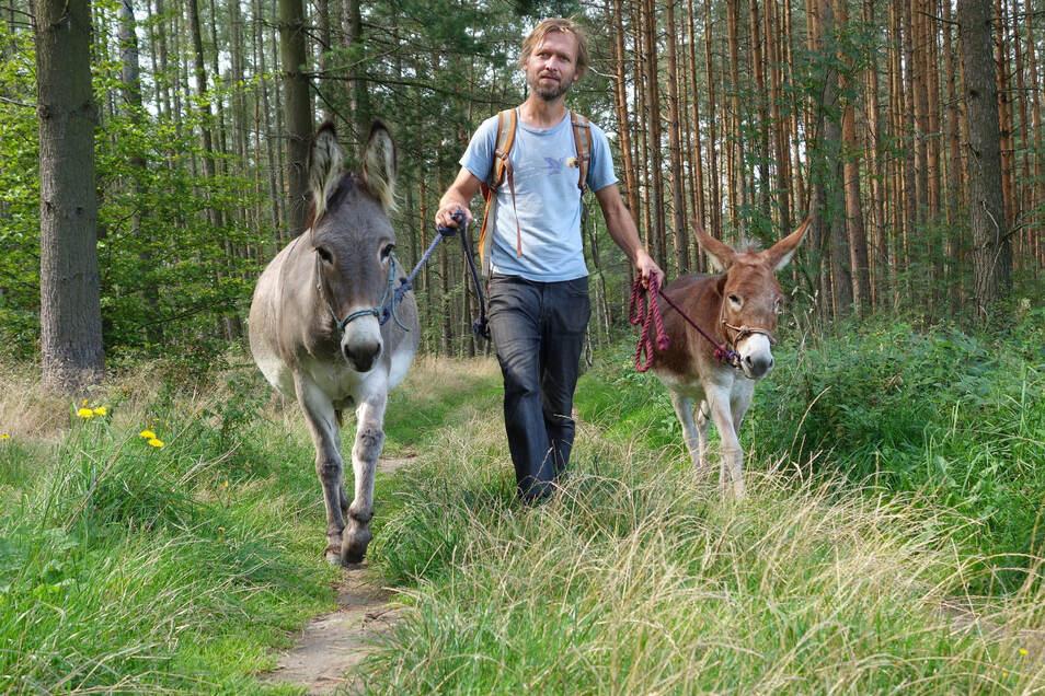 Unterwegs mit den Vierbeinern Sára (links) und Vlasta: Eselverleiher Radim Stross.