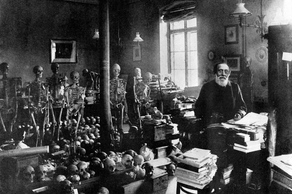 Auch vom Schreibtisch aus auf Knochenjagd: Der Berliner Forscher Rudolf Virchow (1821 - 1902) in seinem Labor.