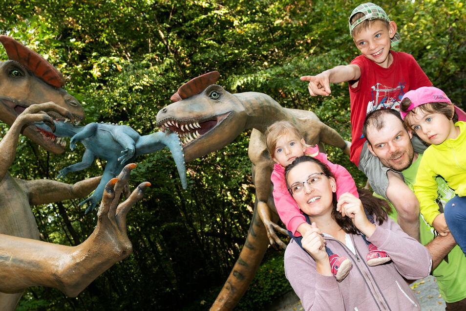 Vor allem Familien verbringen gern einen erlebnisreichen Tag im Saurierpark Kleinwelka. Doch auch der Freizeitpark am Bautzener Stadtrand spürt Langzeit-Folgen der Corona-Einschränkungen.