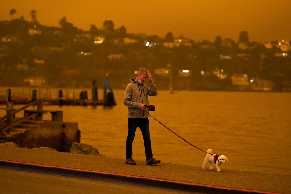 USA, Sausalito: Ein Anwohner geht mit seinem Hund entlang der Bridgeway Avenue spazieren.