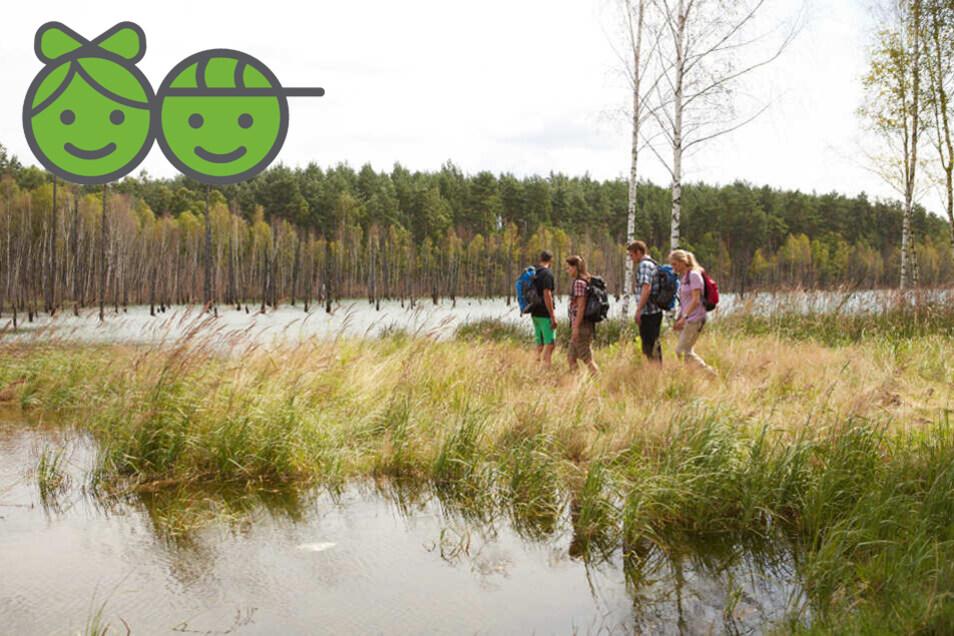 Durch die Heide- und Teichlandschaft der Oberlausitz zu wandern ist ein Vergnügen für die ganze Familie.