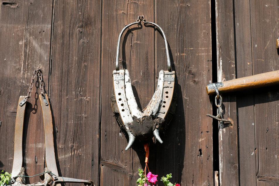 An Hörholds Scheune hängen noch die Geschirre der Lausche-Esel, die jahrelang das Wasser auf den Berg trugen. Nach dem Brand der Baude bekamen sie bei einem Hainewalder Bauern ihr Gnadenbrot.