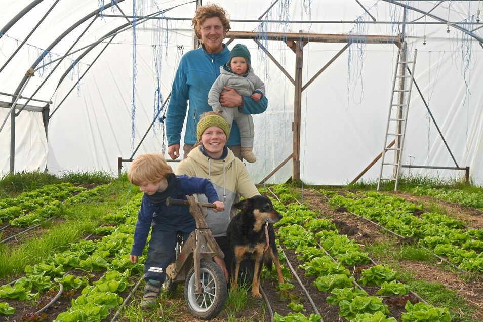 Fenja und Marcus Ender haben sich mit ihren Kindern Wilma und Pepe für ein Leben auf dem Land entschieden. Die Eheleute bauen ungewöhnliches Gemüse an. Erste Frühjahrskultur ist der Salat.
