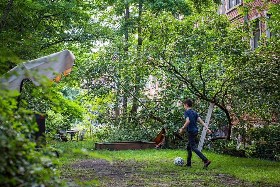 Hinter den Häusern an der Lößnitzstraße ist ein Wäldchen gewachsen, das die Anwohner zum Spielen und Entspannen nutzen. Es soll verschwinden.