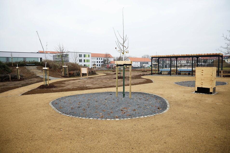 """Der Bürgergarten in Merzdorf ist schon einige Zeit fertig. Für das Vorhaben wurde einiges """"recycelt""""."""