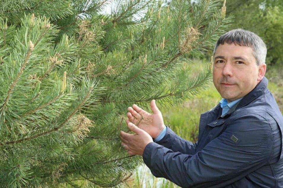 Siegmund Hänchen aus Rothenburg will mit den Freien Wählern einziehen.