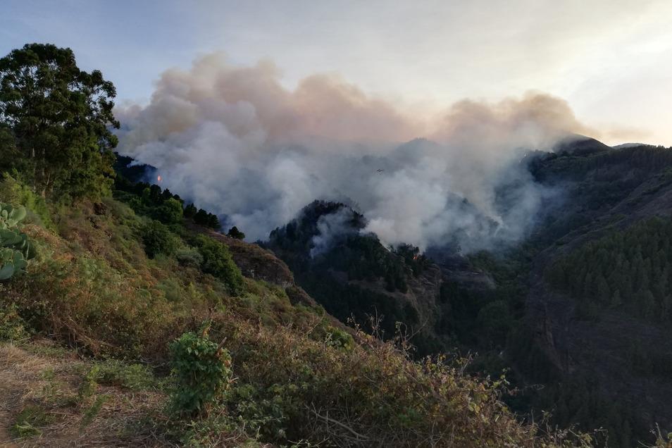 Zeitungen zitierten den Chef der Inselregierung, Antonio Morales, mit den Worten, es könne sich möglicherweise um Brandstiftung handeln.