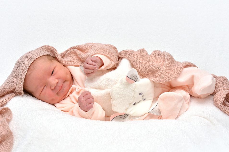 Penelope Allwardt, geboren am 5. Dezember, Geburtsort: Städtisches Klinikum Dresden, Gewicht: 3.910 Gramm, Größe: 51 Zentimeter, Eltern: Michéle Allwardt und Peter Schubert, Wohnort: Dresden