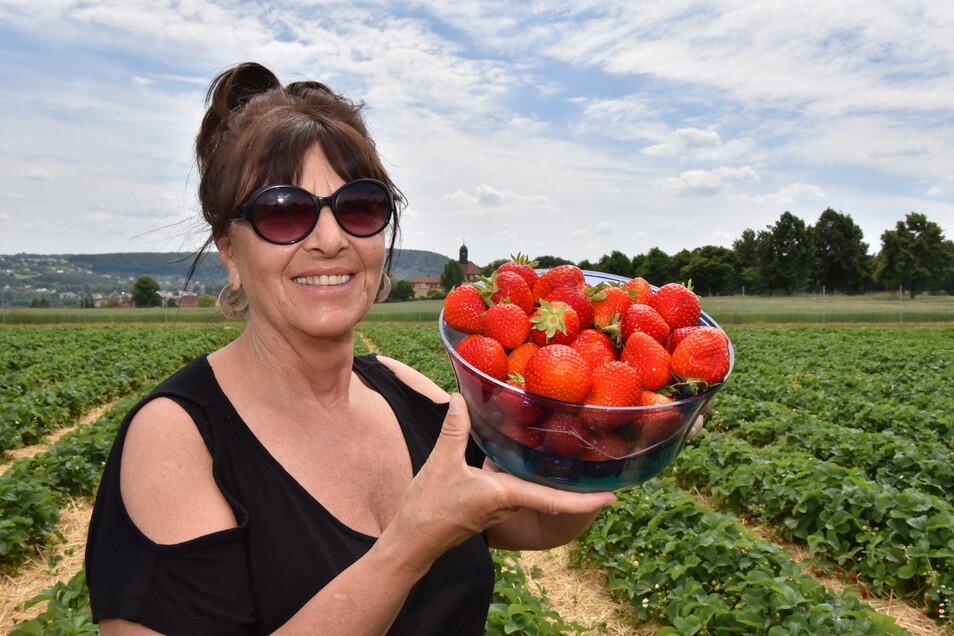 Lecker Obst: Christina Schmidt kommt regelmäßig auf die Pesterwitzer Felder.