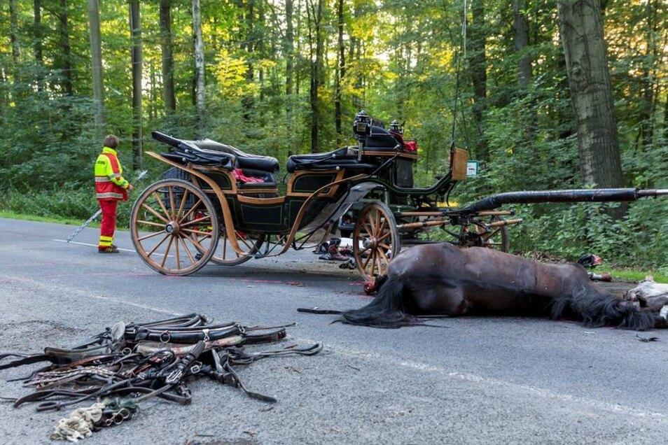 Eins der Pferde war sofort tot, das andere musste eingeschläfert werden.