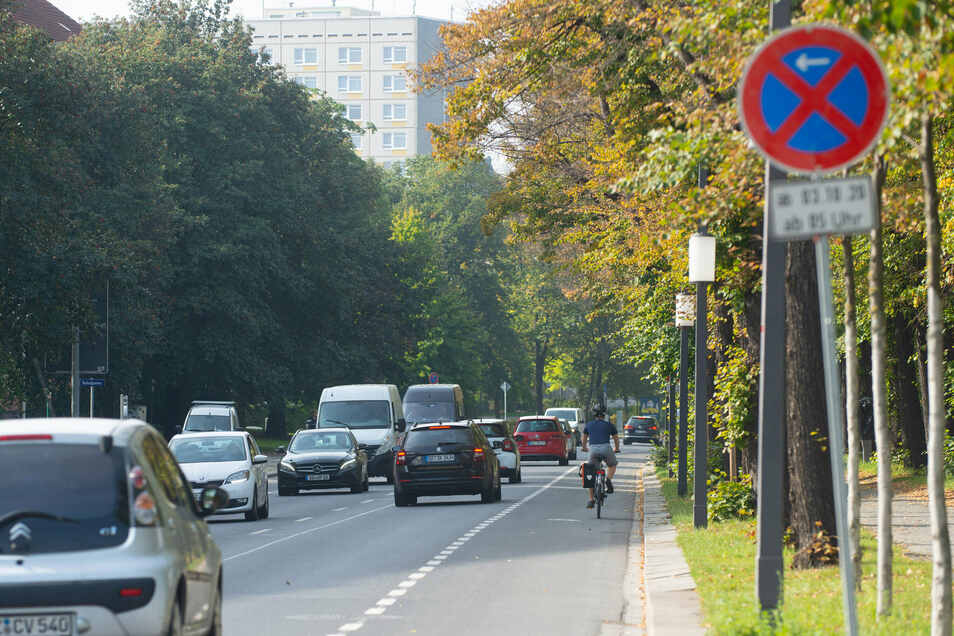 Der neue Radstreifen führt am Terrassenufer von der Albertbrücke in Richtung Innenstadt