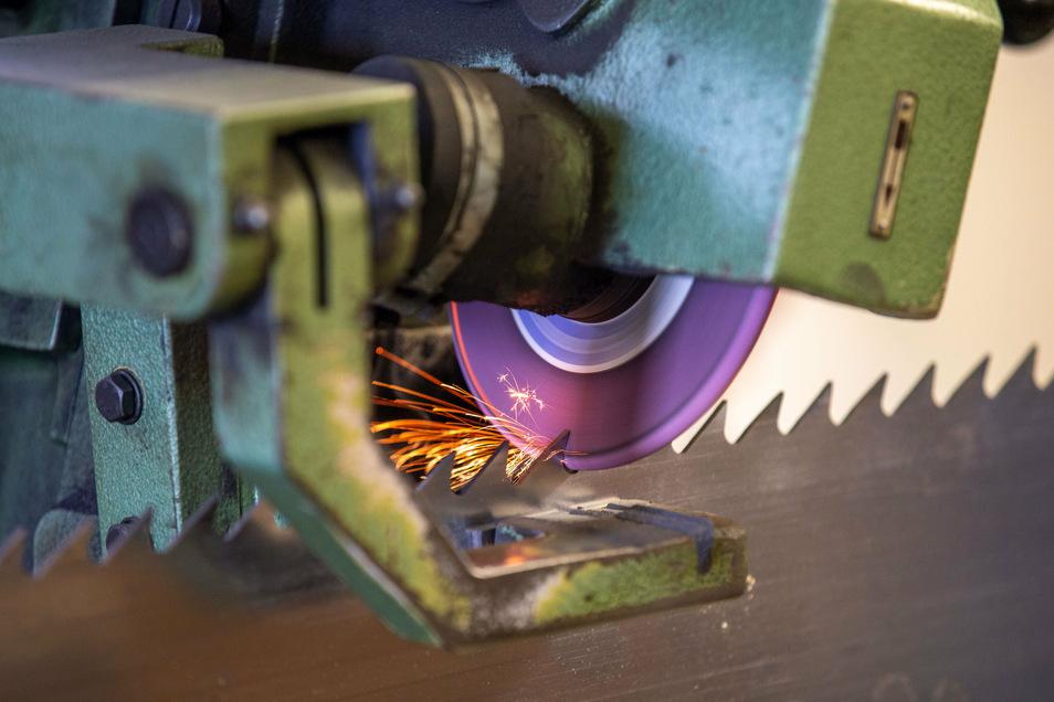 Während die Produktion läuft, sorgt der Schleifautomat unentwegt für frisch geschärfte Sägen. Rund siebzig Sägeblätter sind im Umlauf.