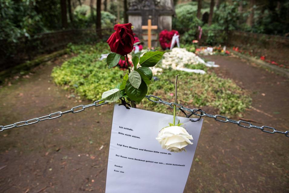 Blumen liegen auf der Grabstätte von Jan Fedder auf dem Ohlsdorfer Friedhof.