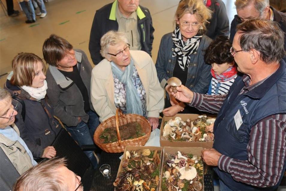 Pilzsachverständiger Frank Lehnert wird bei seiner Pilzbeschau von vielen interessierten Pilzsammlern umringt.