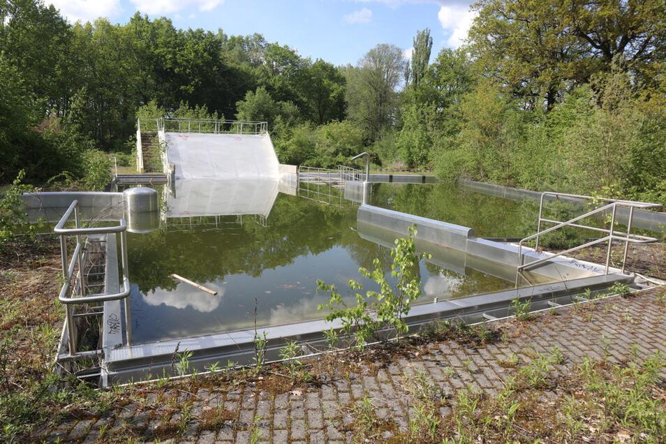 Seit 2010 ist das Lohsaer Freibad geschlossen. Langsam erobert sich die Natur das Gelände zurück. Jetzt strebt die Gemeinde Lohsa eine sinnvolle Nachnutzung an.