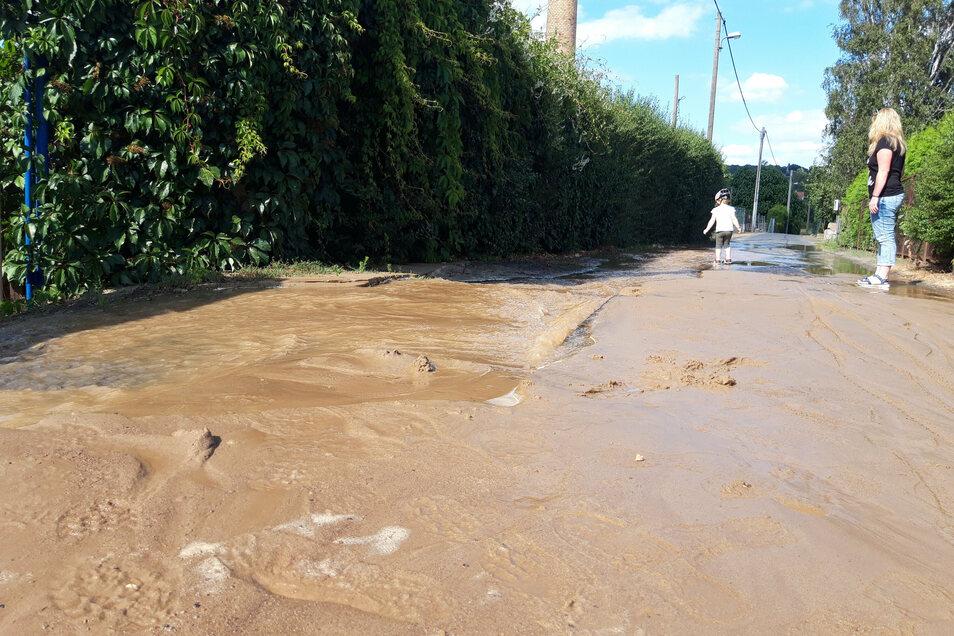 Mitten auf dem Horkenweg hat sich ein Loch aufgetan, aus dem das Wasser rinnt.