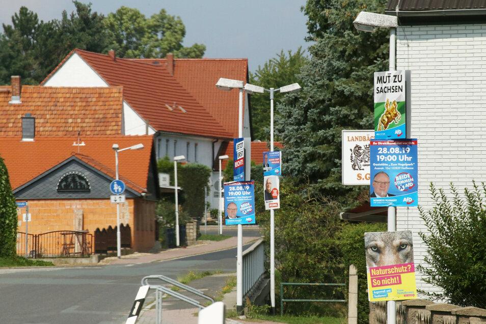 In Zodel nicht zu übersehen: An jedem zweiten oder dritten Lampenmast hängt ein Wahlplakat der AfD.