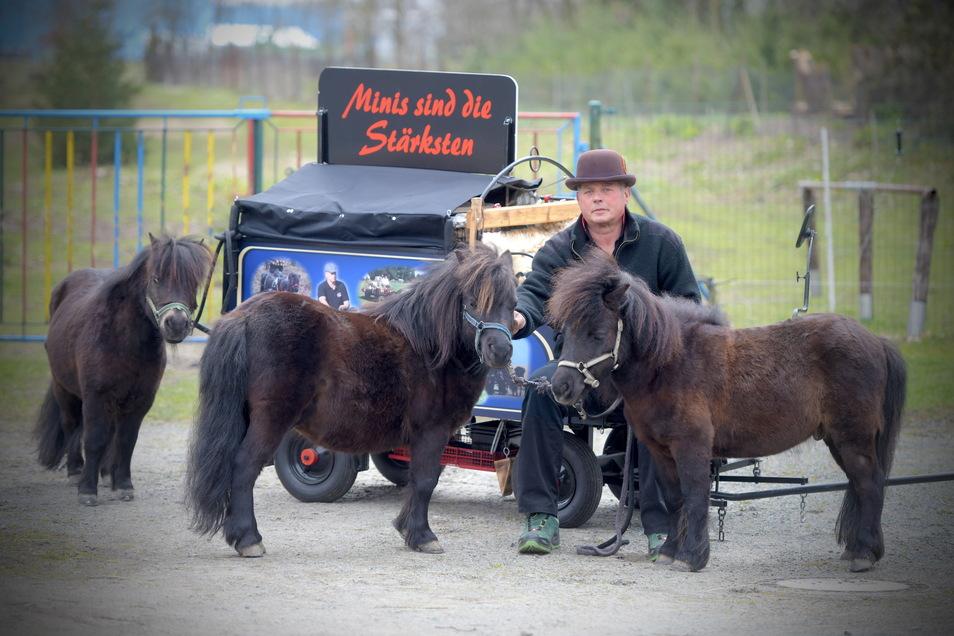Winfried Mattutat aus Ebersbach mit seinen Mini-Shetland-Ponys Yankee Boy, Elasso und Günther, mit denen er bald samt Kutsche auf Tour geht.