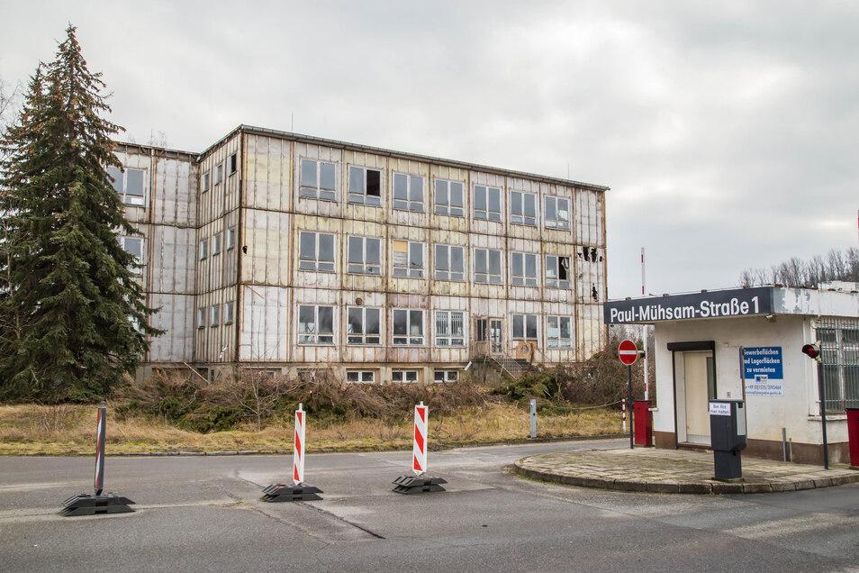 Das Verwaltungsgebäude in der Paul-Mühsam-Straße 1 in Görlitz-Weinhübel wird abgerissen. Nur das Stahlskelett bleibt stehen. Offenbar will das der Käufer weiter nutzen, für einen Neubau.