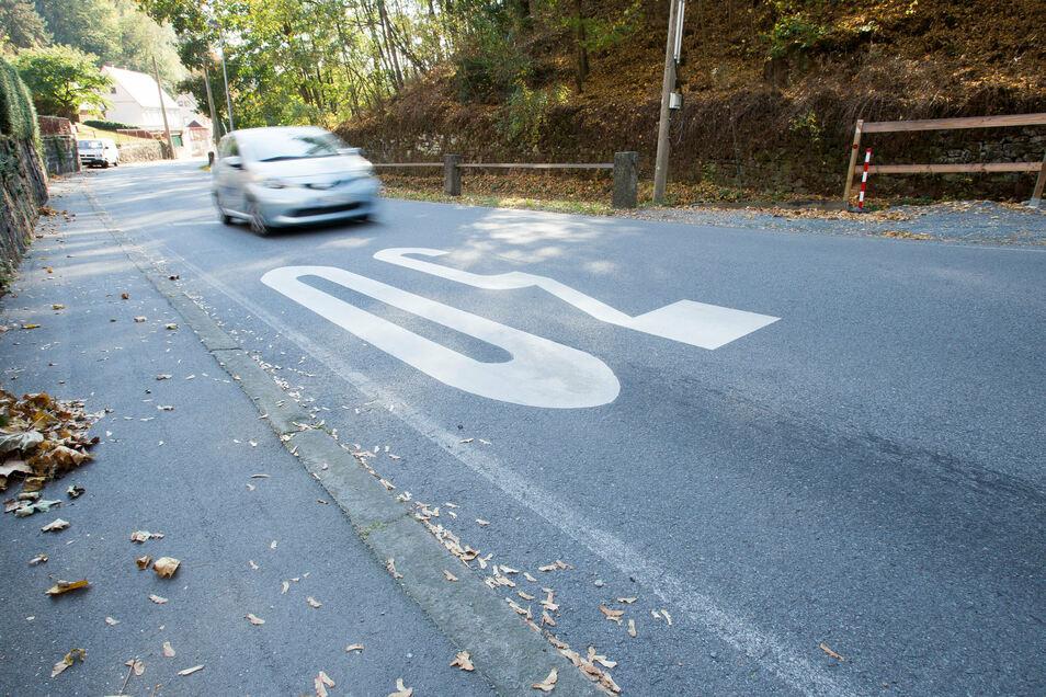 Tempo-30-Markierung auf der Grundstraße in Pirna: Ähnliche Hinweise werden auch für andere Bereich in Copitz gefordert.