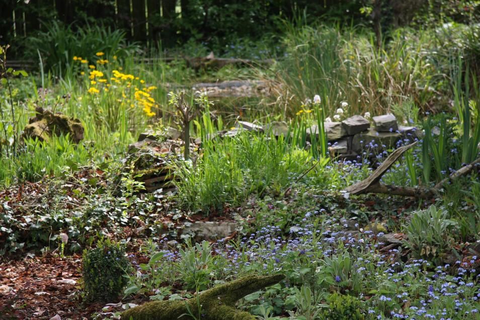 Ein Naturgarten lockt viele Tierarten an.