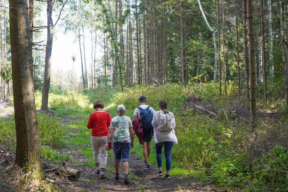 Neben geführten Wanderungen werden weitere Touren angeboten wie der Oberlausitzer Hunderte. Informationen dazu gibt es unter https://www.saechsischer-wandertag.de/wandertouren.html