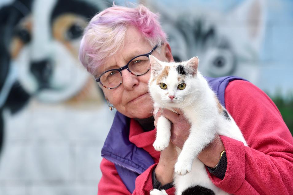 Ein Foto vom Februar 2019: Manuela Dornfeld mit der damals sechs Monate alten Katze Laila, die ein neues Zuhause suchte.