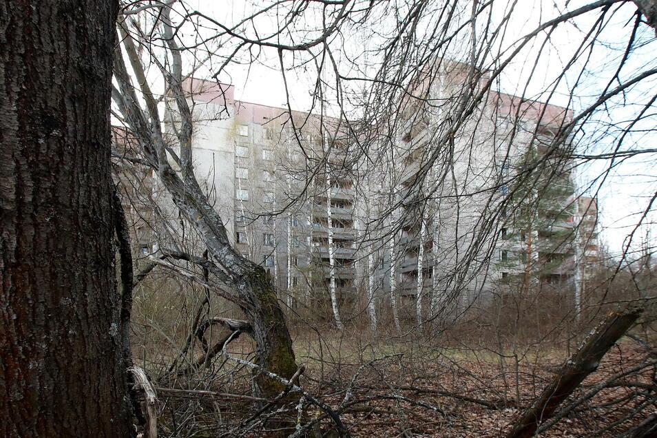 Ukraine, Prypiat: Ein verlassenes Gebäude steht in der Geisterstadt Prypiat in der Nordukraine. Die heute verlassene Stadt wurde 1970 im Zusammenhang mit dem Kernkraftwerk Tschernobyl gegründet und nach dem Reaktorunglück geräumt.
