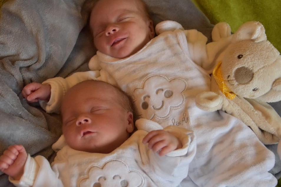 Emma und Otto Geboren am 8. März Geburtsort Dresden Gewicht 2.330 und 1.980 Gramm Größe 46 und 45 Zentimeter Eltern Susan und Filip Petasch Wohnort Säuritz