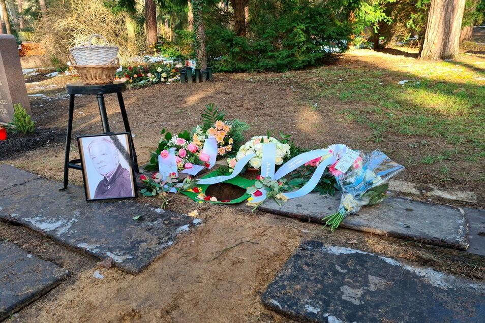 Die letzte Ruhestätte von Gisela D.: ein kleines Loch unter vier großen Kiefern auf dem Dresdner Heidefriedhof.