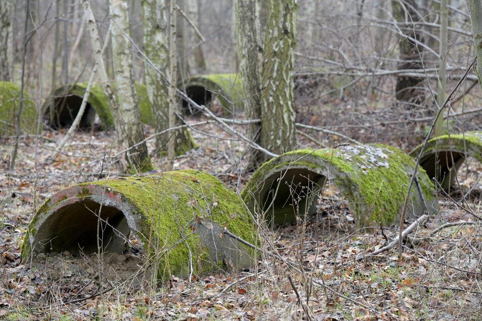 All diese Bauteile sollen jetzt aus dem Wald entfernt werden, ohne dass allzu viel vom Baumbestand dabei gefällt werden muss.