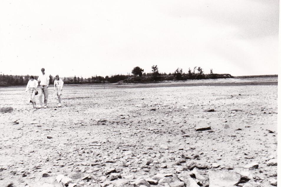 Im Sommer 1990 konnte man zur Insel laufen.